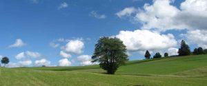 Elmer landschaft muehlviertel