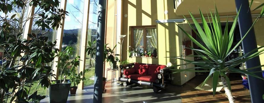 bambusbank im elmer wintergarten